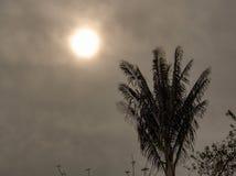 Sol da tarde atrás de algumas nuvens tenous imagens de stock