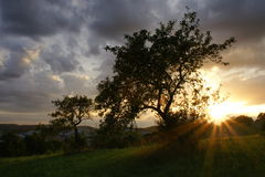 Sol de ajuste Fotografia de Stock Royalty Free