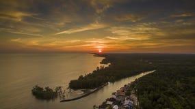 Sol de ajuste com primeiro plano da floresta Fotos de Stock Royalty Free