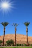Sol de brilho acima dos oásis Imagem de Stock Royalty Free