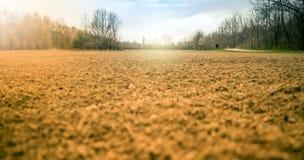 Sol de Cropland photo libre de droits