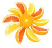 Sol de la fruta cítrica fotografía de archivo