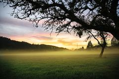 Sol de la mañana Imagen de archivo libre de regalías