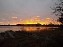 Sol de la primavera de la mañana Fotos de archivo libres de regalías