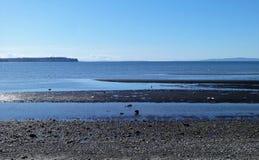 Sol de la primavera en la playa de la bahía del abedul Fotos de archivo