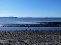Sol de la primavera en la playa de la bahía del abedul Foto de archivo libre de regalías