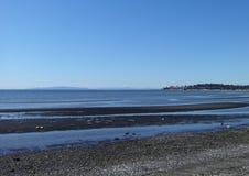 Sol de la primavera en la playa de la bahía del abedul Imagen de archivo libre de regalías