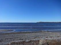 Sol de la primavera en la playa de la bahía del abedul Fotos de archivo libres de regalías