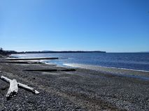 Sol de la primavera en la playa de la bahía del abedul Fotografía de archivo libre de regalías