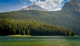 Sol de la tarde en las orillas negras del lago Imagen de archivo libre de regalías