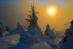 Sol de la tarde en montañas del invierno Foto de archivo libre de regalías