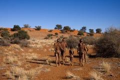 Sol de los bosquimanos Fotos de archivo