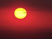 Sol de oro Foto de archivo