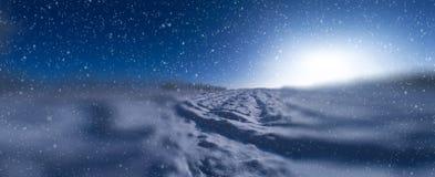 Sol del campo de nieve de los árboles del invierno Imagenes de archivo