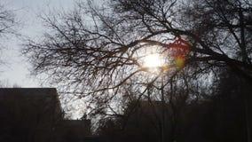 Sol del invierno almacen de metraje de vídeo