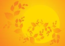 Sol del verano