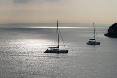 Sol do amanhecer sobre o louro de Palma. Fotos de Stock Royalty Free