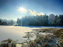 Sol do inverno Fotografia de Stock Royalty Free