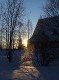 Sol do inverno do por do sol em um fundo de árvores cobertos de neve Foto de Stock Royalty Free