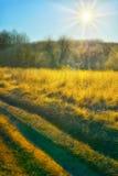 Sol do outono sobre o campo da estrada fotos de stock royalty free