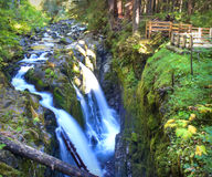 Sol Duc Falls Royalty Free Stock Images