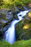Sol Duc Falls Stock Images
