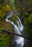 Sol Duc Falls In Olympic National Park, Washington Stock Photos