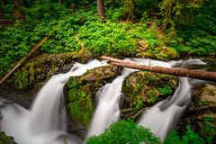 Sol Duc Falls Olympic National Park royalty free stock photography