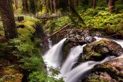 Sol Duc Falls in parco nazionale olimpico Fotografie Stock Libere da Diritti