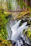Sol Duc Falls, parco nazionale olimpico, Washington State, U.S.A. fotografia stock