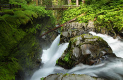 Sol Duc Falls, Washington, USA. Sol Duc Falls in Olympic national park, USA Royalty Free Stock Photo