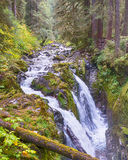 Sol Duc River Falls, Olympic National Park, WA Stock Photos