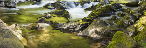 Sol Duc River Rocks Panorama Royalty Free Stock Photos