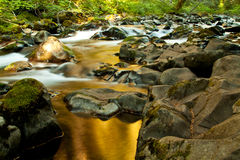 Sol duc Stream. Stream, Sol Duc, Olympic National Park, Washington, USA Stock Image