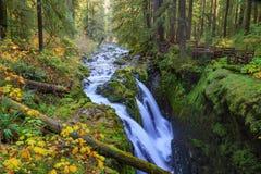 Sol Duc-Wasserfall im Regen-Wald Stockbilder