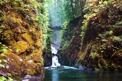 Sol Duc Stock Photography