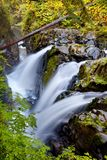 Sol Duc Royalty Free Stock Photography