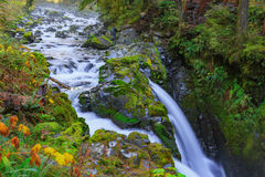 Sol Duc waterfall in Rain Forest. Sol Duc waterfall in rainforest at Olympic National Park, Oregon Coast Royalty Free Stock Photography