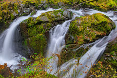 Sol Duc waterfall in Rain Forest Royalty Free Stock Photography