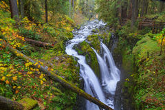 Sol Duc waterfall in Rain Forest. Sol Duc waterfall in rainforest at Olympic National Park, Oregon Coast Stock Images
