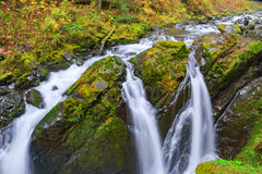 Sol Duc waterfall in Rain Forest. Sol Duc waterfall in rainforest at Olympic National Park, Oregon Coast Stock Photos