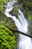 Sol Duc waterfalls in Washington. Stock Photography