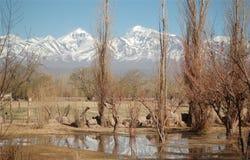 Sol en las montañas Fotos de archivo libres de regalías
