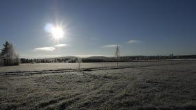 Sol en un paisaje del invierno Fotos de archivo libres de regalías