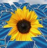 Sol- energi Royaltyfri Fotografi