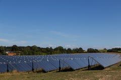 sol- energigreenväxt Royaltyfri Foto