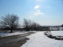 Sol frio da geada da região selvagem do céu do inverno da neve do campo imagem de stock