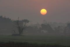 Sol grande Foto de archivo libre de regalías