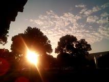 Sol i morgonen Royaltyfri Foto