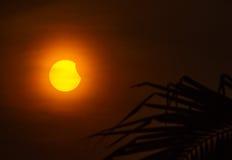 sol- illustration för förmörkelse för bakgrundsblackdesign Royaltyfri Fotografi